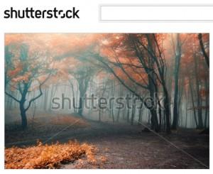 霧のかかった薄気味悪い秋の森