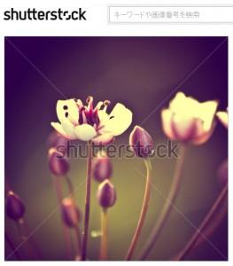 ヴィンテージ感のある花の背景